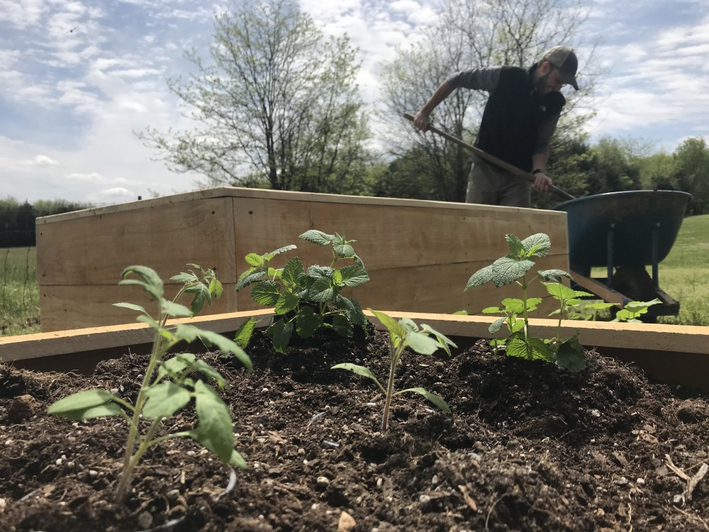 C Jackson Designs Gift a Garden