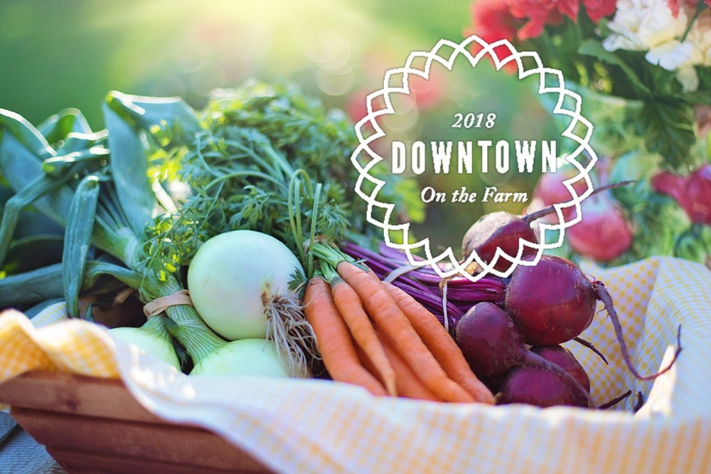 2018 Downtown on the Farm