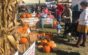 Milton Fall Market & Craft Fair