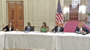 Panel at the White House Coronavirus Task Force