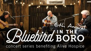 Bluebird in the Boro