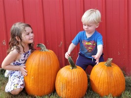 Fall festivals abound