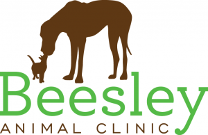 Saturday Wellness Day at Beesley Animal Clinic