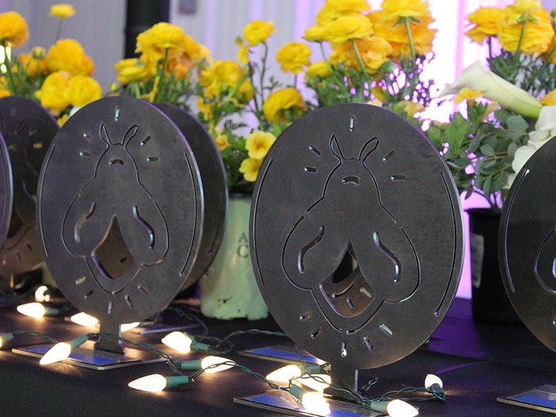 Light Up Local Firefly Awards